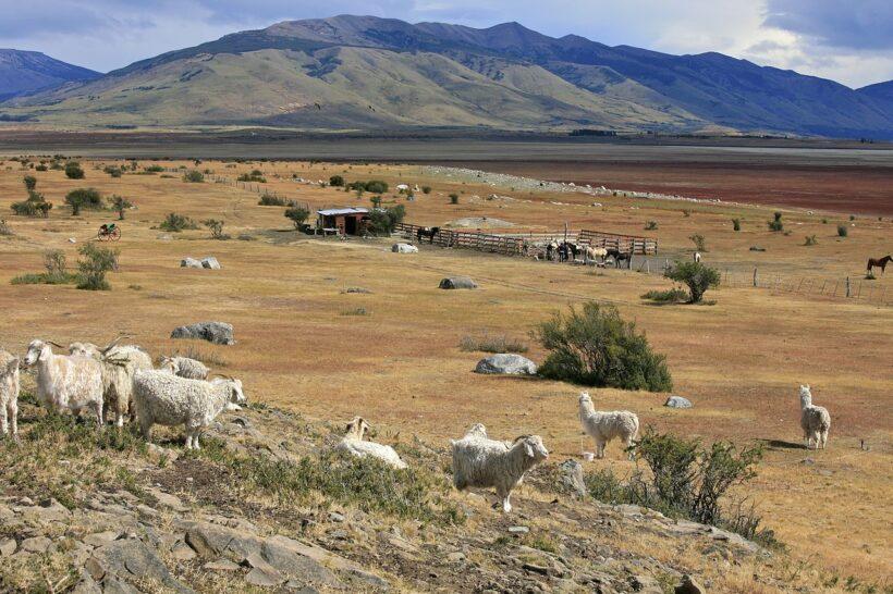 Best Road Trip Patagonia