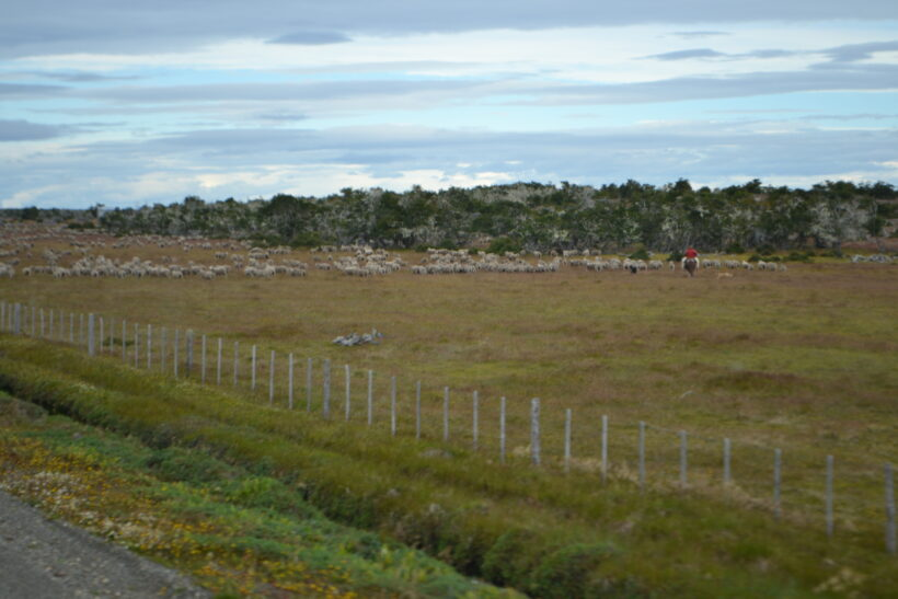 Patagonia Tour
