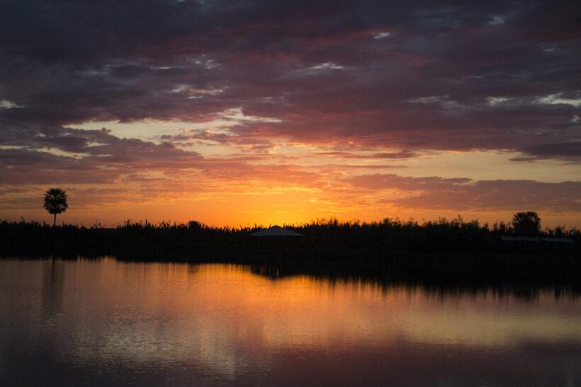 Wetlands Argentina